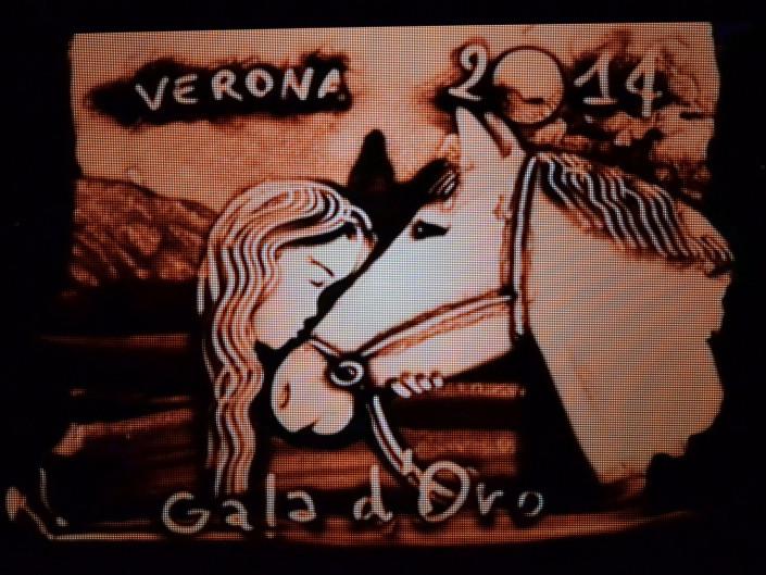 Gala Verona 2014