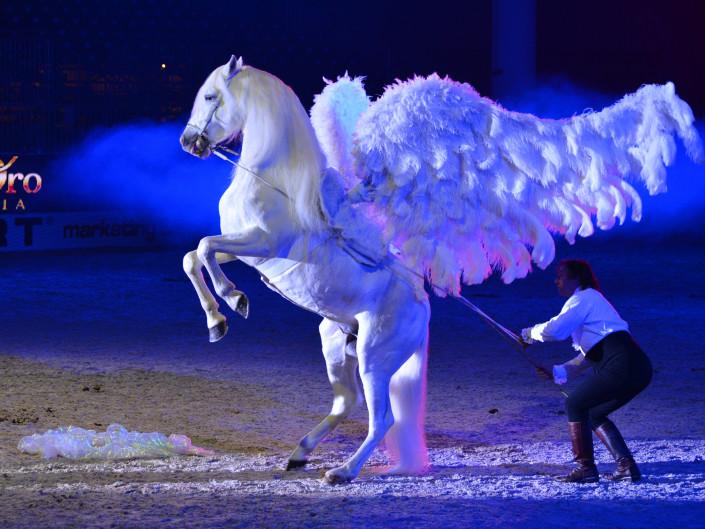 Verona Gala 2012